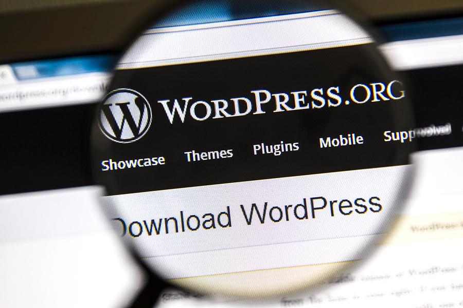 Los Angeles WordPress Developer